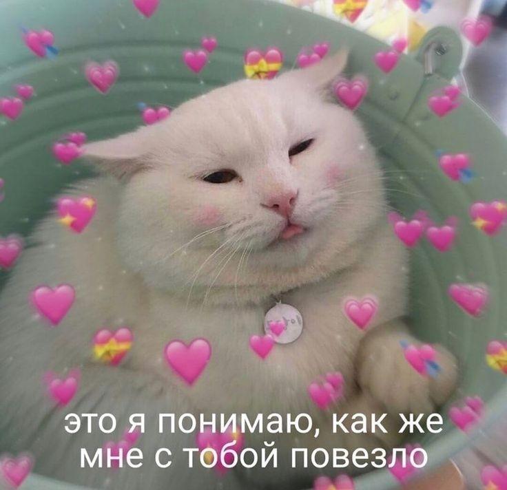 Юля любит тебя, Тимур!